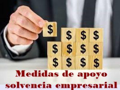 Medidas de apoyo solvencia empresarial